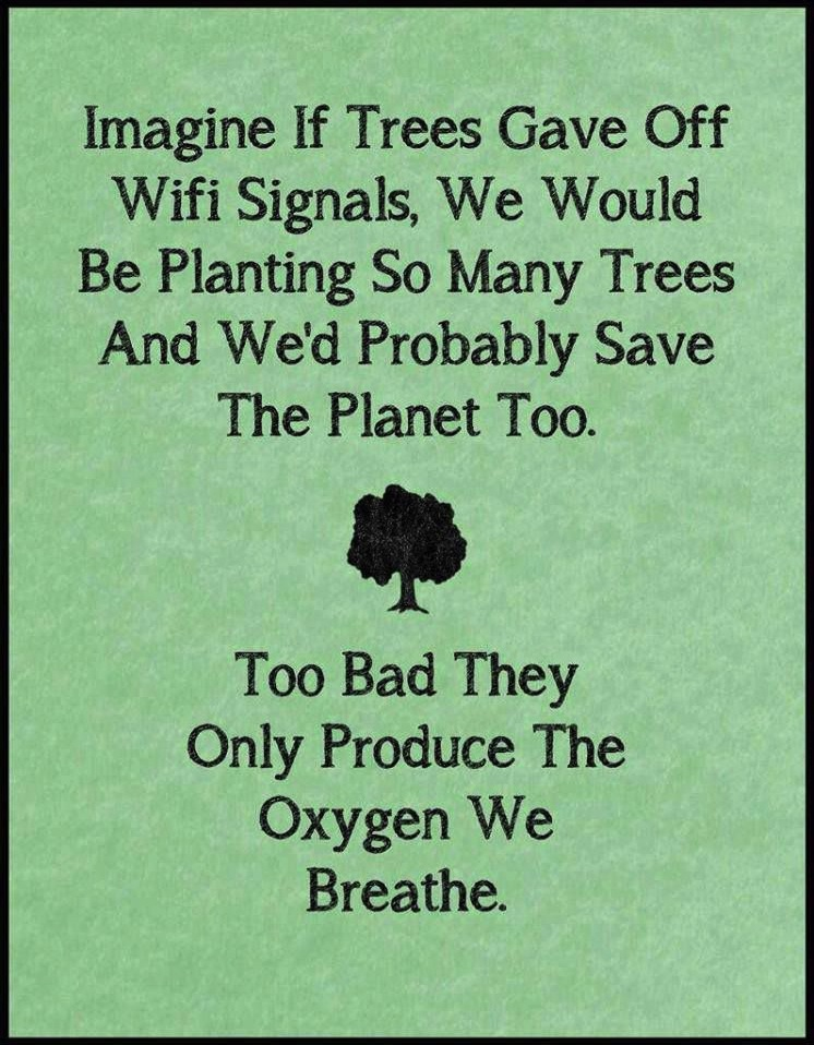 Funny Ecards - imagine if trees