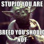 Funny Memes: breed you should not