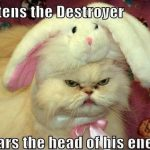 Funny Animals Memes - mittens the destroyer