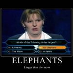 Funny Memes - elephants larger than the moon