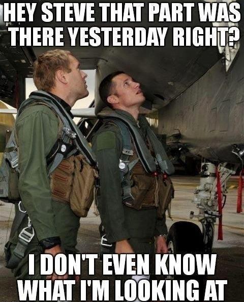 Funny Memes - hey steve