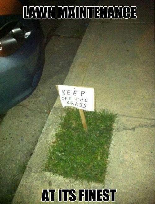 Funny Memes - lawn maintenance