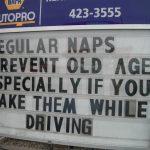 Funny Memes - regular naps
