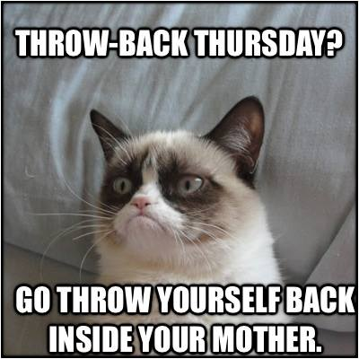 Animal Memes - grumpy cat thursday