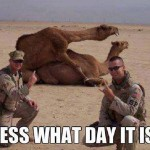 Animal Memes - guess what day