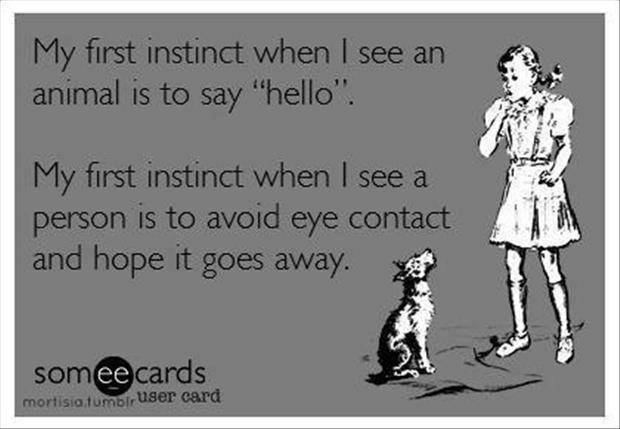 Funny Memes - Ecards - my first instinct
