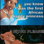Funny Memes - first african disney princess