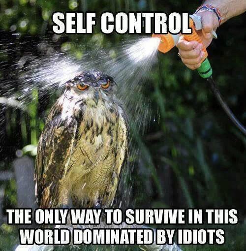 Funny Memes - self control