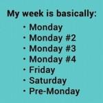 Funny Memes -my week