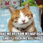 Funny Animal Memes - wake me up again