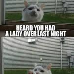 Funny Memes - hey bro