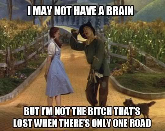 Funny Memes - i may not have a brain