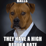 Animal Memes - high return rate