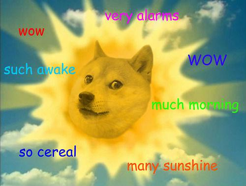 Dog Memes - doge meme 1
