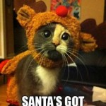 Funny Animal Memes - santa has enough