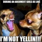 Funny Animals Memes - im not yelling