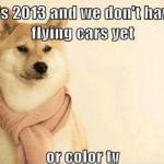 Funny Animals Memes - its 2013