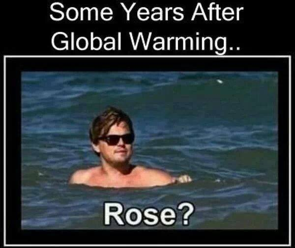 Funny Memes - leo and rose
