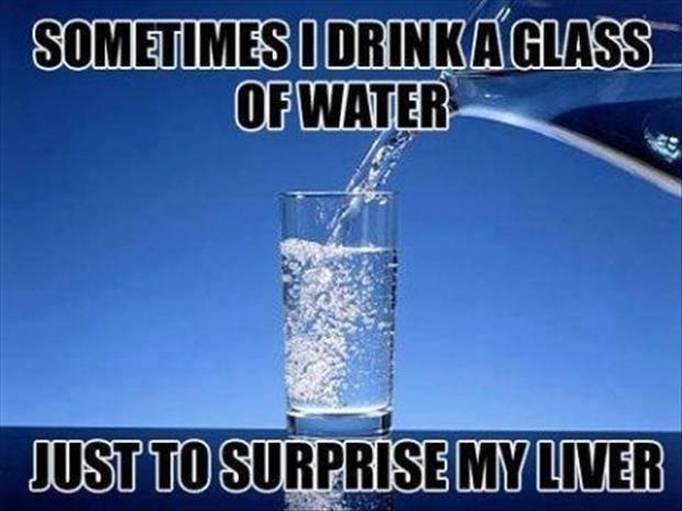Funny Memes - surprise my liver