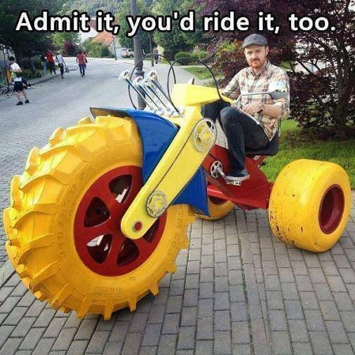 Funny Memes - youd ride it too