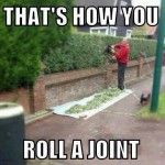 Funny Memes - roll a joint