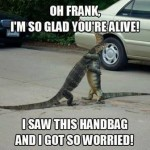 Funny Animal Memes - youre alive