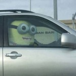 Funny Memes - despicable me passenger