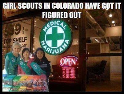 Funny Memes - smart girl scouts