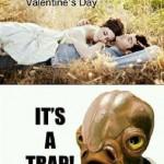 Funny Memes -its a trap