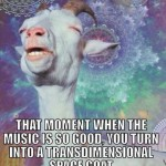 Funny Memes - space goat