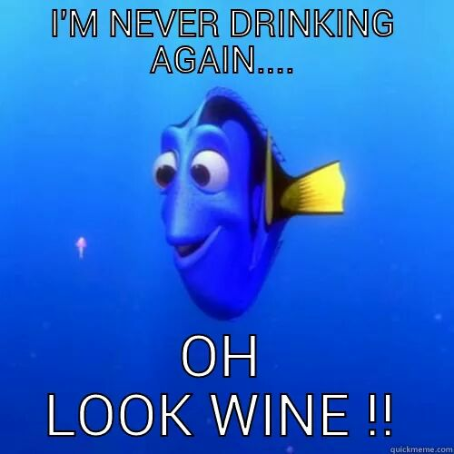 Funny Cartoon Memes - Im never drinking again