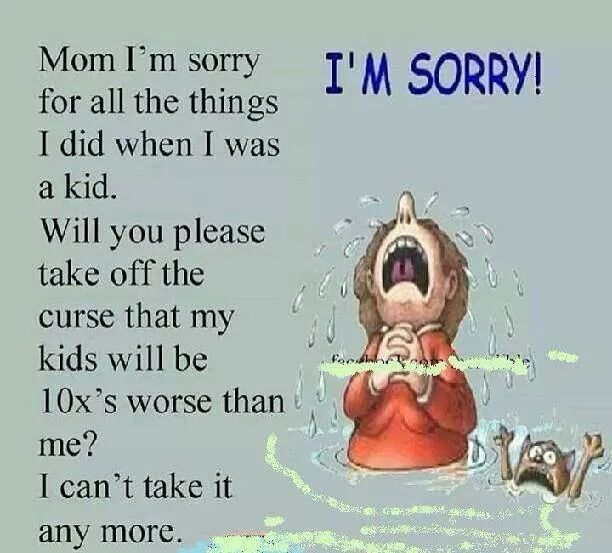 Mom I M Sorry Funny Memes Meme generator, instant notifications, image/video download, achievements and. mom i m sorry funny memes