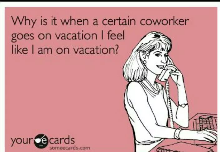 Funny Memes - Ecards - vacation