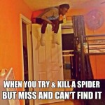 Funny Memes - Spider lol