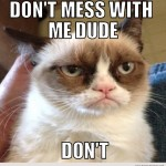 Cat Memes: Don't mess with me dude don't